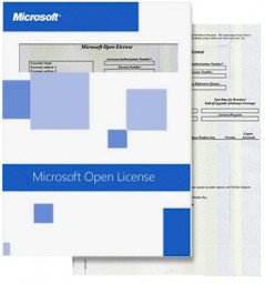 Microsoft Skype for Business Server CAL 2019 Standard Single Language OLP NL User CAL (6ZH-00732)