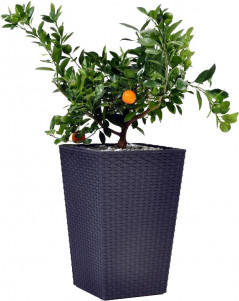 Вазон Keter Medium Rattan Planter 38.5 х 38.5 х 57 см Серый (7290103659288)
