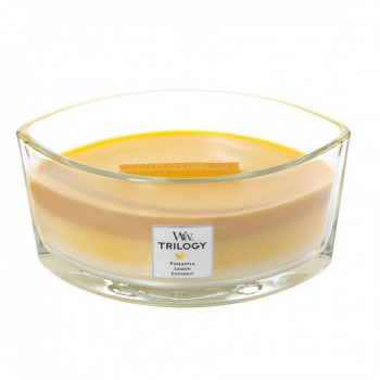 Ароматическая свеча WoodWick Ellipse Trilogy Fruits of Summer 453 г